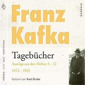 Franz Kafka: Tagebücher - Auszüge aus den Heften 4-12 von 1912-1923 Hörbuch
