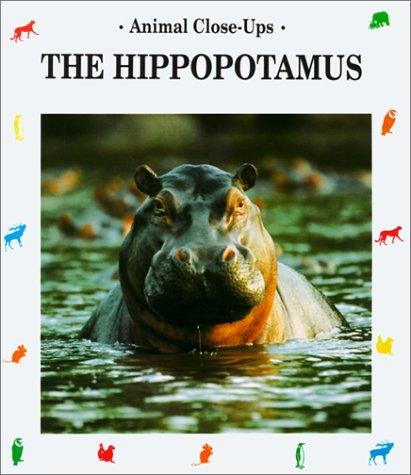 Hippopotamus, River Horse (Animal Close-Ups)