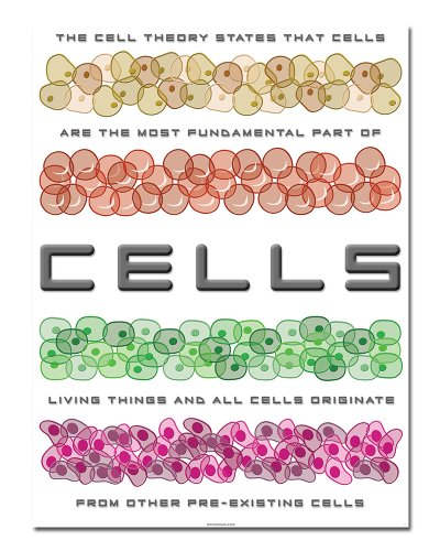 Cell Theory   18  X 24    Classroom Poster