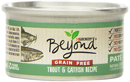 Purina Beyond Natural Cat Food Review