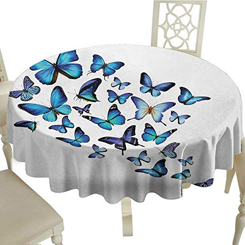 Curioly Butterflies Washable Tablecloth Group of Flying Butterflies Natural Botanic Parks Springtime Festive Dinner Picnic Home Decor D35.4 Inch Blue Sky Blue Black