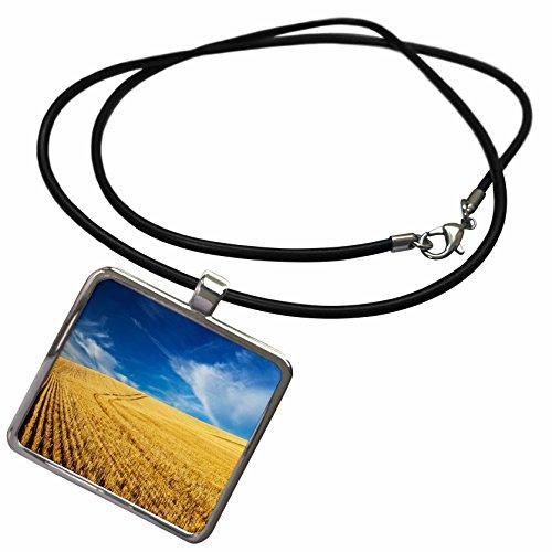 3dRose Danita Delimont - Farms - Farm Fields, Harvest Wheat, Palouse, Washington, USA - US48 TEG0425 - Terry Eggers - Necklace With Rectangle Pendant (ncl_148727_1)