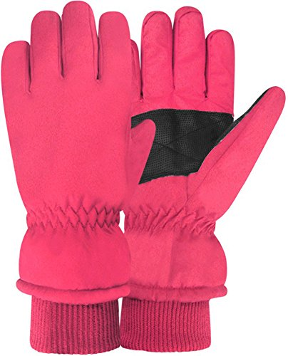 60 Gloves (Igloos Women's C40 Thinsulate Insulation Taslon Ski Gloves, Raspberry, Medium/Large/60cm)