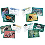 Learning Resources Animal Classifying Cards Bundle