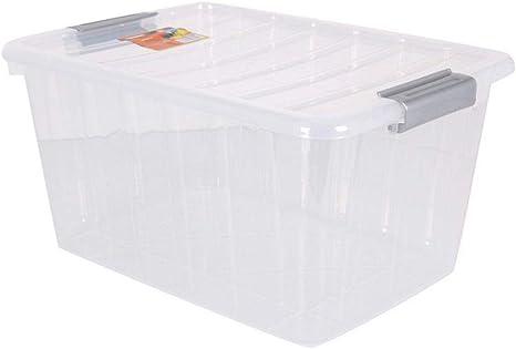 BigBuy Home Caja De Almacenaje con Tapa Thais 30 L Transparente: Amazon.es: Hogar