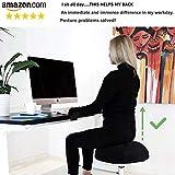 THE ORIGINAL Balance Ball Office Chair