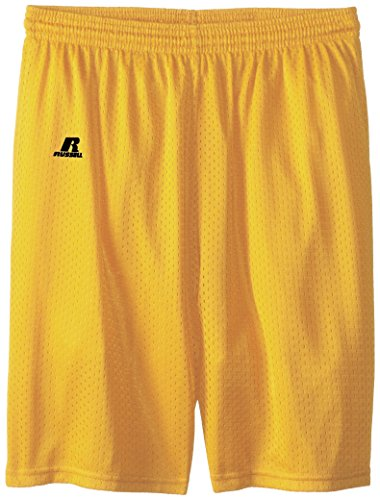 Gold Boy Shorts (Russell Athletic Big Boys' Youth Mesh Short, Gold,)