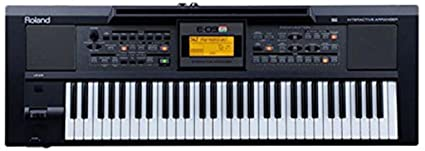 2e17f60f9b2 Roland E09IN Indian Edition Interactive Keyboard Arranger with Indian Sound  Suite