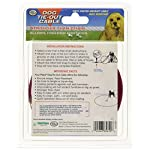 FOUR-PAWS-PRODUCTS-456900-Red-Cable-Dog-Tieout-10-Feet