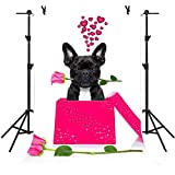 MME 5x7Ft Funny Dog Backdrop Pink Box And Rose Background Wedding Photo Video Studio Photography ME013