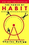 The Power of Habit: Why We Do What We Do in Life & Business