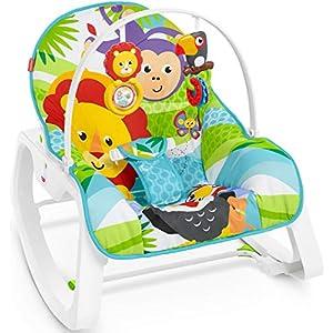 Fisher-Price Newborn to Toddler Rocker...