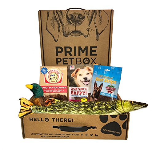 Dog Gift Box (Prime Pet Box Wildlife Dog Gift Box Care Package - Made in the USA Premium Treats, 18