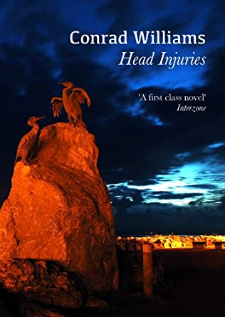 book cover of Head Injuries