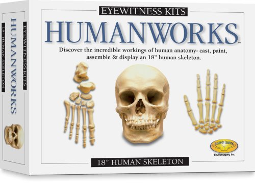Eyewitness Kits Humanworks Casting Kit -