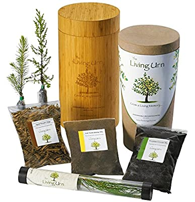 The Living Urn for People. Cremation Funeral Urn for Humans Including a Premium Tree Seedling. Grow a Living Memory Tree from the Ashes of a Loved One. 100% Biodegradable.