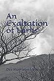 An Exaltation of Larks: Book 3 Crone