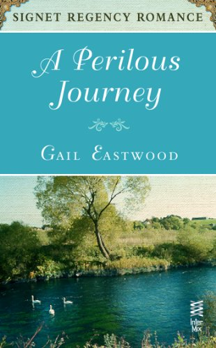 book cover of A Perilous Journey