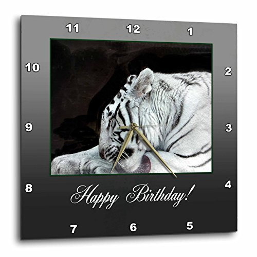3dRose dpp_179274_3 White Tiger Grooming, Birthday-Wall Clock, 15 by 15-Inch ()