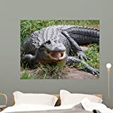 Crocodile or Alligator Wall Mural Wallmonkeys Peel and Stick Graphic (48 in W x 36 in H) WM346020