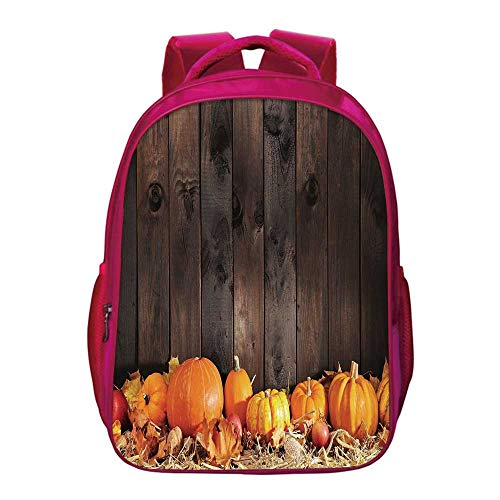 Harvest Lightweight School Bag,Thanksgiving Themed Pumpkins Many Shapes and Sizes in Hay Wooden Board Background Decorative for Kids Girls,11.8