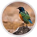 Pixels Round Beach Towel With Tassels featuring ''Superb Starling'' by Adam Romanowicz