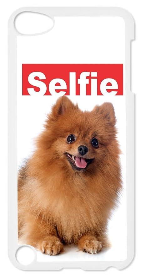 Amazon Com Rikki Knight Selfie Brown Pomeranian Dog Design Ipod