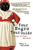 img - for Your Negro Tour Guide: Truths in Black and White book / textbook / text book