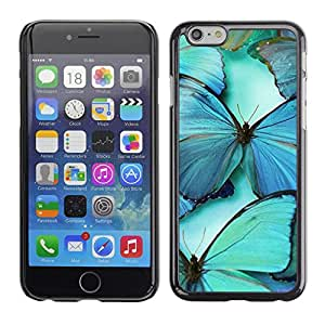 Planetar® ( Teal Blue Nature Insect Wing ) Apple (5.5 inches!!!) iPhone 6+ Plus / 6S+ Plus Fundas Cover Cubre Hard Case Cover