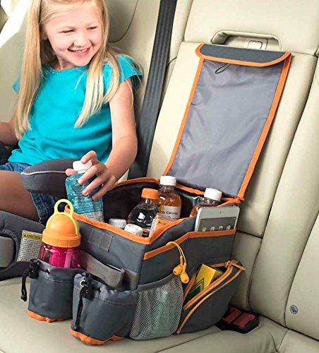 High Road Kids Back Seat Car Organizer