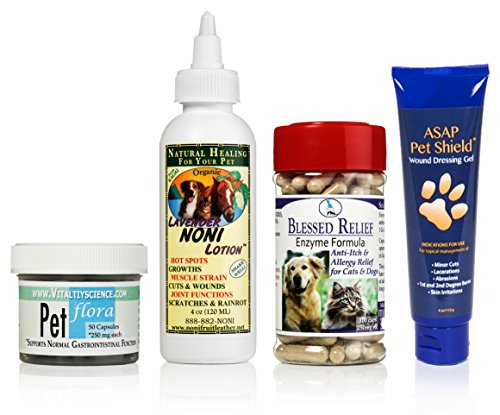 Cat Skin Allergy | 4 Part Natural Program | Enzyme and Probiotic Supplements, Colloidal Silver Gel, and Noni lotion