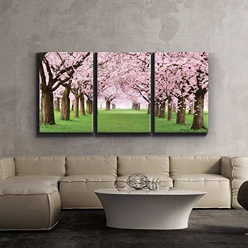 3 Piece Canvas Print - Contemporary Art, Modern Wall Decor - Beautiful Cherry Blossom trees - Giclee Artwork - Gallery Wrapped Wood Stretcher Bars - Ready to Hang- Wall26 - - Wall Cherry Wood