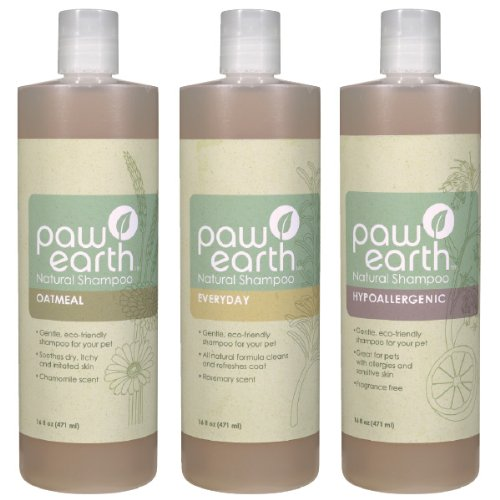 Paw Earth Everyday Natural Pet Shampoo, 16-Ounce, My Pet Supplies
