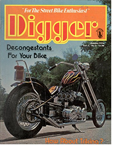 1976 Harley Davidson - 9