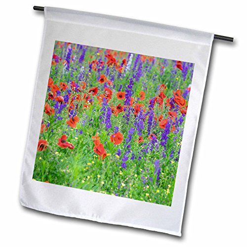 3dRose Danita Delimont - Flowers - Poppy field with wildflowers, Mount Olive, North Carolina, USA - 18 x 27 inch Garden Flag (fl_279269_2) (Field Mount Single Pole)