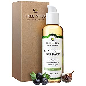 Organic Face Wash for Oily Skin, pH 5.5—The Only Acne Face Wash for Men & Women that Deep Cleans Pores with Gentle Soapberry Lather, Awakening Peppermint, 6oz—Tree to Tub