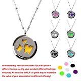 """M.JVisun Butterfly Wearable Essential Oil Diffuser Necklace - Stainless Steel Locket + 24"""" Chain + 7 Pads"""
