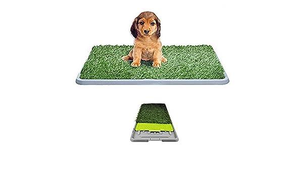Cama para perros hierba sintética césped sintético alfombra absorbente antiolores: Amazon.es: Bricolaje y herramientas