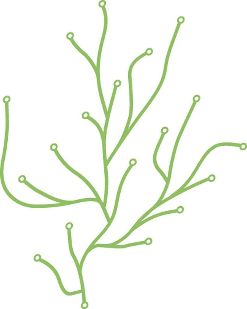 Algue by Ronan and Erwan BouroullecからVitra グリーン VERHM592 B072R5YQMR  ライトグリーン