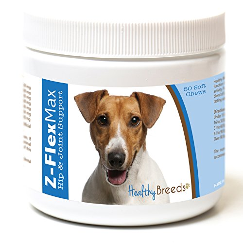 Healthy Breeds Z Flex Max Hip & Joint Supplement Soft Chews for Jack Russell Terrier  - OVER 100 BREEDS - Medium & Large Breed Formula - 50 Count