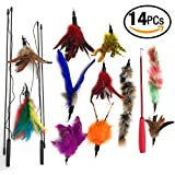 Cat Feather Toy Cat Teaser Wands Interactive Toys For Kitty Retractable Fishing Rod - Natural Feather Refills With Teaser Wand–14 Pcs Cat Pet Exercisers Play And For Endless Fun
