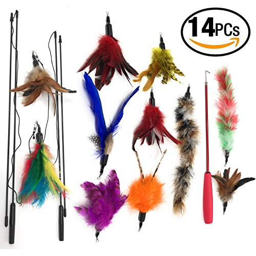 Teaser Cat Wand (Cat Feather Toy Cat Teaser Wands Interactive Toys For Kitty Retractable Fishing Rod - Natural Feather Refills With Teaser Wand–14 Pcs Cat Pet Exercisers Play And For Endless Fun)