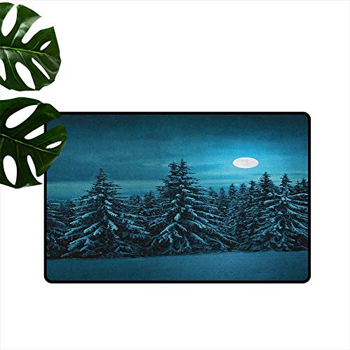 Night,Kitchen Rugs Tranquil Blue Night with Moon in Woods Covered with Snow Serene Winter View 18