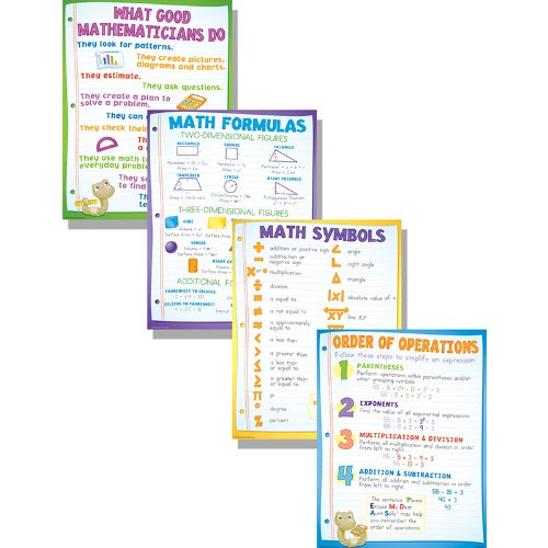 McDonald Publishing Math Basics Teaching Poster -