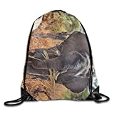 Safari Africa Animal Elephant Unisex Home Gym Sack Bag Travel Drawstring Backpack Bag
