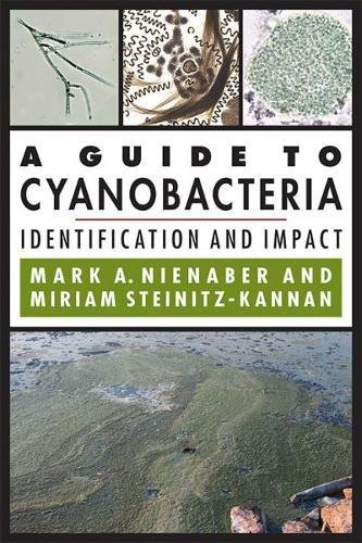 A Guide to Cyanobacteria: Identification and Impact