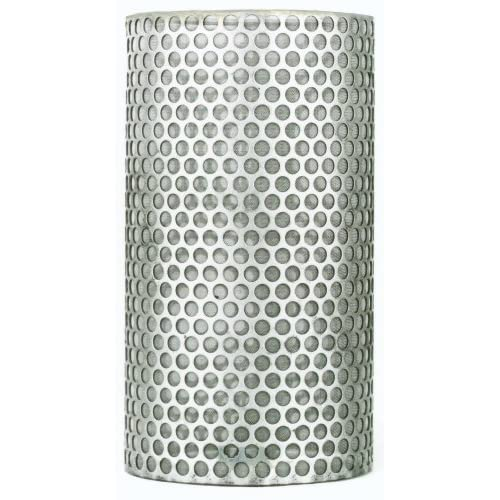 PT Coupling Petroleum Handling Series Stainless Steel 304 100 Mesh Y-Strainer Basket, 1""