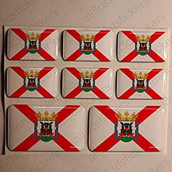 Pegatinas Vitoria España Resina, 8 x Pegatinas Relieve 3D Bandera Vitoria España Adhesivo Vinilo: Amazon.es: Coche y moto