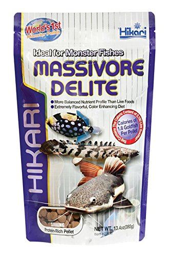 Hikari Usa Inc AHK22036 Massivore Delite 13.4-Ounce (Best Food For Arowana Fish)