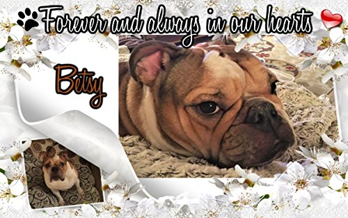 Personalized Pet Memorial Garden Plaque Stone Grave Marker And Sympathy Gift For Pet Loss Cat or Dog Indoor Or Outdoor